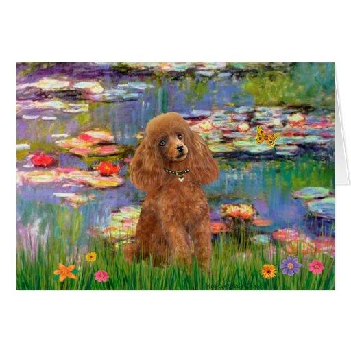 Poodle (Apricot 10) - Lilies 2 Card