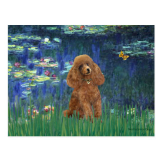 Poodle (Apricot 10) - Lilies 5 Postcard
