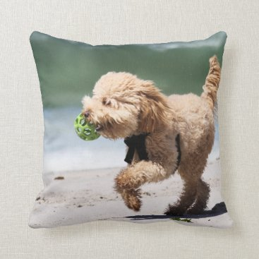 Beach Themed Poodle - Apricot - Poodle Play Beach Dogs Throw Pillow