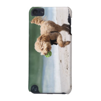 Poodle - Apricot - Poodle Play iPod Touch (5th Generation) Case