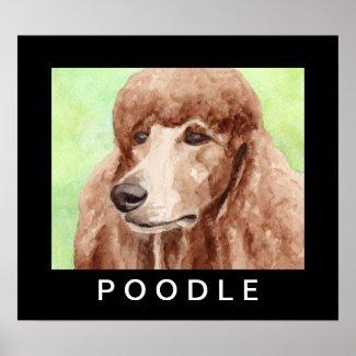 Poodle Art Poster