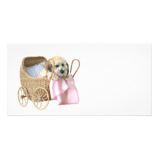 Poodle baby buggy card