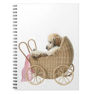 Poodle baby buggy spiral notebook