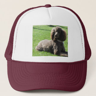 Poodle Ball Cap