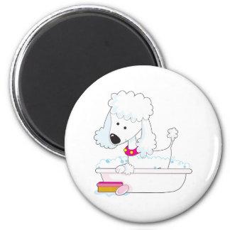 Poodle Bath Fridge Magnet