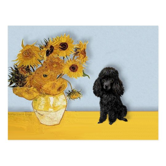 Poodle (Black1) - Sunflowers Postcard