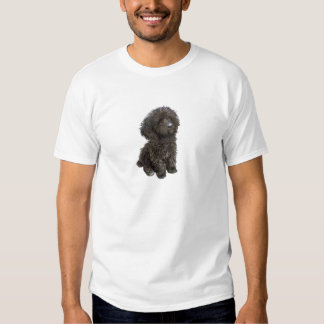 Poodle - black toy pup t-shirt