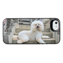 Uncommon iPhone 5/5s Permafrost® Deflector Case with Poodle Phone Cases design
