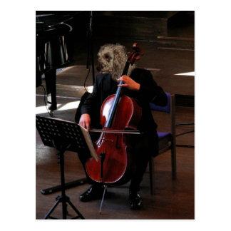 Poodle cellist postcard