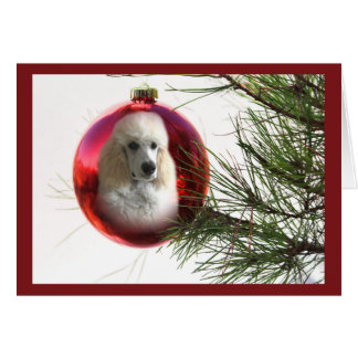 Poodle  Christmas Card Ornament
