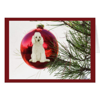 Poodle Christmas Cards - Invitations, Greeting & Photo Cards | Zazzle
