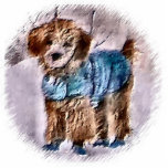 Poodle Christmas Gifts Ornament Photo Cutout