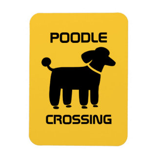 Poodle Crossing - Black on Yellow - Customizable Magnet