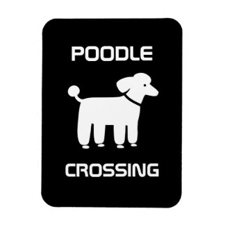 Poodle Crossing - White on Black - Customizable Magnet