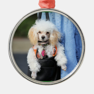 Poodle Day - Hanging Around on a Lazy Day Ornament
