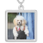 Poodle Day - Hanging Around on a Lazy Day Pendant