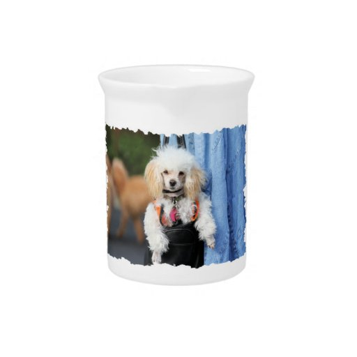 Poodle Day - Hanging Around on a Lazy Day Drink Pitchers