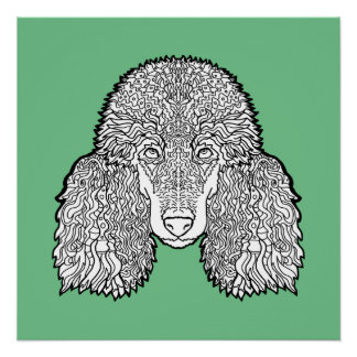 Poodle - Detailed Dogs Poster