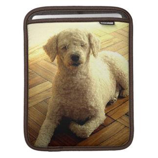 Poodle Dog iPad Sleeve
