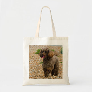 Poodle dog miniature beautiful photo at beach budget tote bag