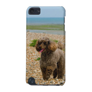 Poodle dog miniature beautiful photo at beach iPod touch 5G cover
