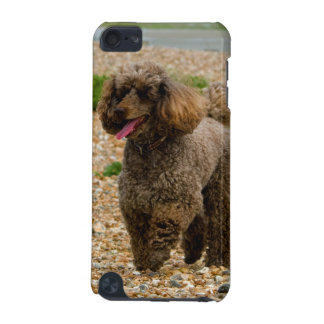 Poodle dog miniature beautiful photo at beach iPod touch 5G cases