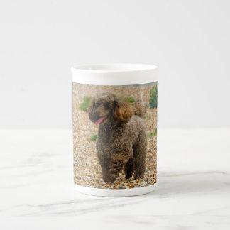 Poodle dog miniature beautiful photo at beach tea cup