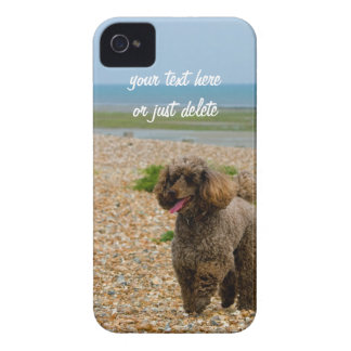 Poodle dog miniature beautiful photo custom beach iPhone 4 case