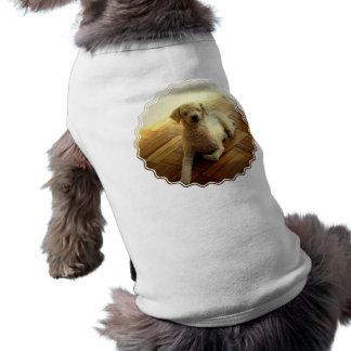 Poodle Dog Pet Shirt