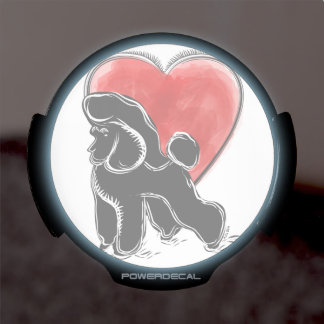 Poodle Drawing LED Car Decal