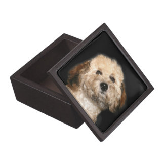 poodle face gift box