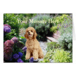 Poodle Garden Greeting Card