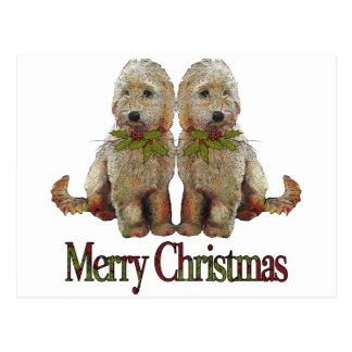 Poodle, Golden Doodle Couple Christmas: Art Postcard