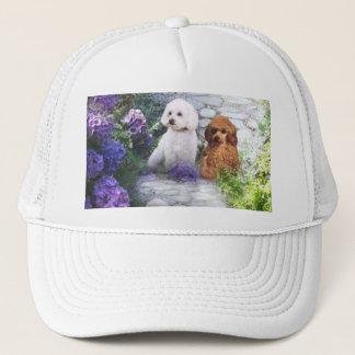 Poodle Hat Hydrangea