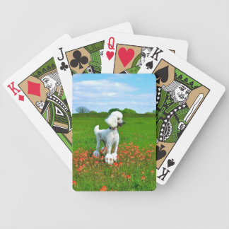 Poodle in Spring Bicycle Playing Cards