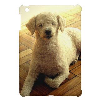 Poodle iPad Mini Case