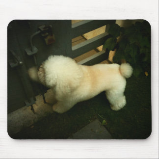 Poodle Knocking at Your Door - Lomo Mouse Pad