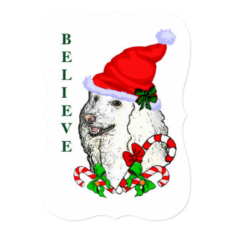 Poodle Lovers Christmas Card