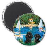 Poodle Pair (black) - Sailboats Refrigerator Magnet