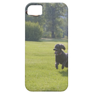 Poodle playing frisbee iPhone SE/5/5s case
