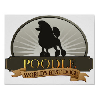 Poodle.png Poster