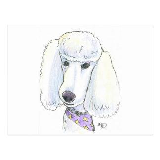Poodle Postcard