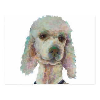 Poodle Pride and Pet Me Products Post Cards