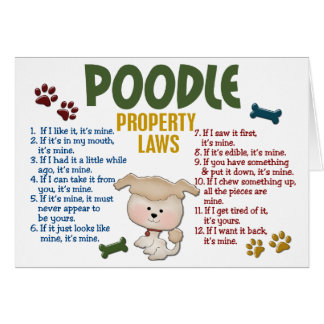 Poodle Property Laws 4 Card
