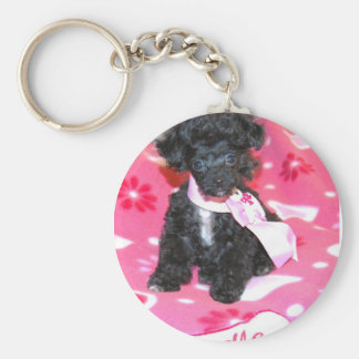 Poodle puppy in Pink Key Chains