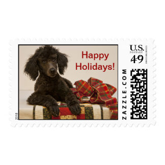 Poodle puppy says Happy Holidays! on USPS stamp