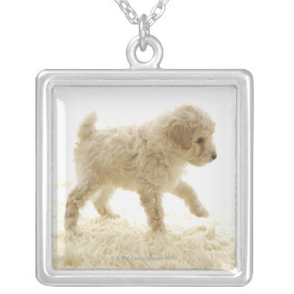 Poodle Puppy Silver Plated Necklace