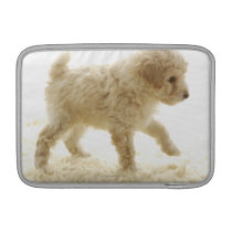 Poodle Puppy Sleeve For MacBook Air