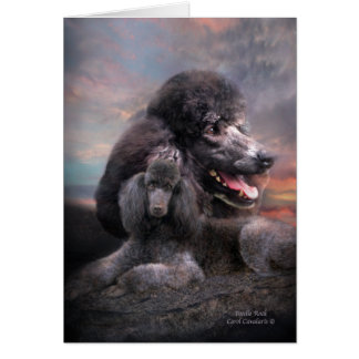 Poodle Rock ArtCard Card