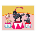 Poodle Sisters Circus Act Postcard